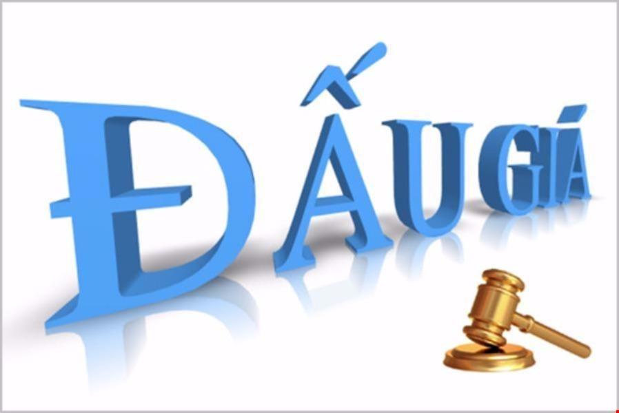 Thành lập công ty chuyên về định giá đấu giá và thanh lý tài sản