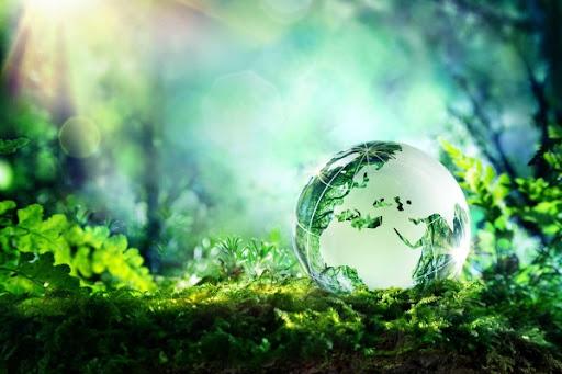 Thành lập công ty tư vấn thiết kế về môi trường