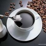 Công bố chất lượng cà phê